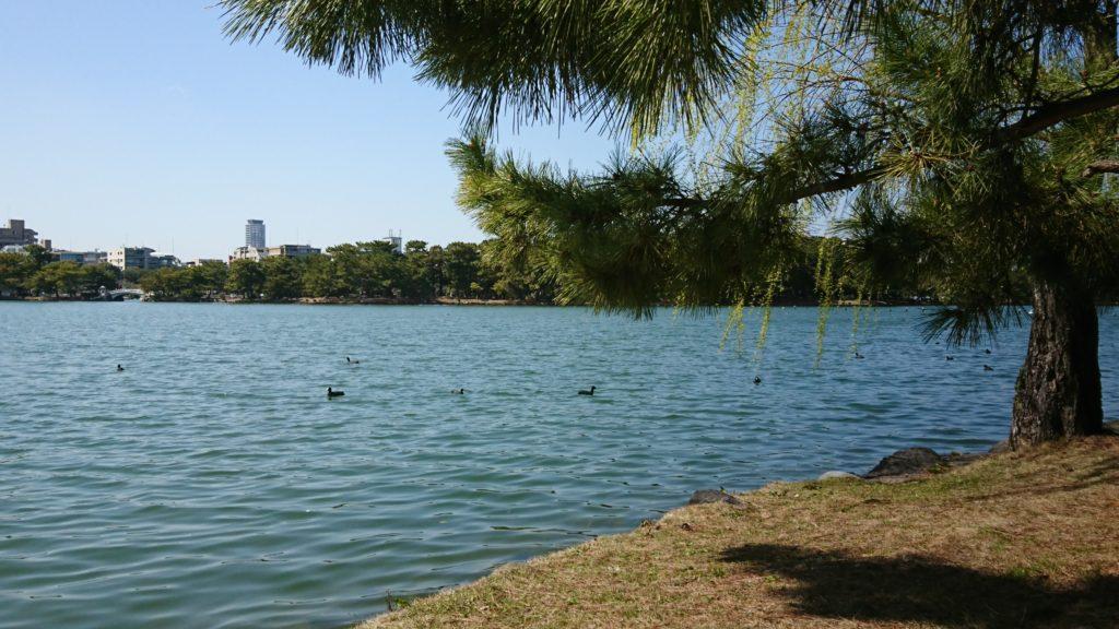 福岡城址と大濠公園はみどり豊かな福岡観光スポット