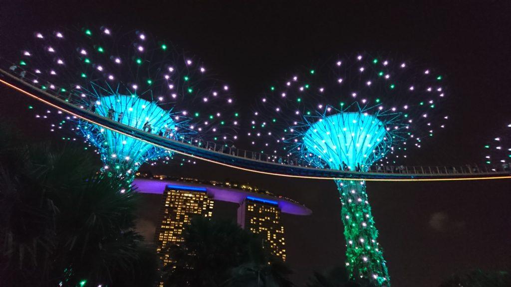マリーナベイサンズの2つの光のショーをはしごして鑑賞してみた